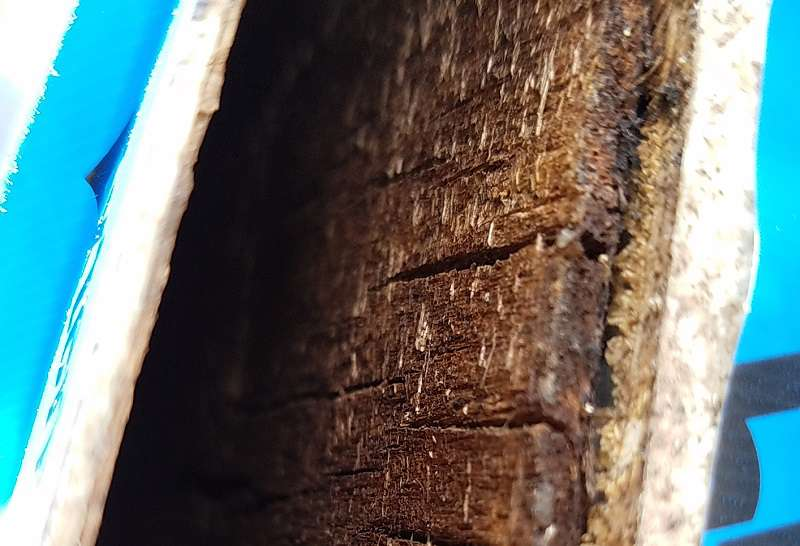 RV Delamination Repair affected layers - RVWITHTITO